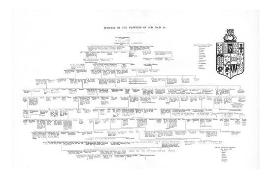 Pedigree of the Frowykes of Old Fold, 1886-Unknown-Giclee Print