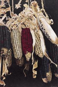 Hanging Maize Cobs, 2005 by Pedro Diego Alvarado