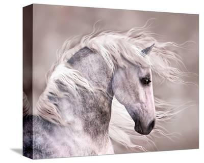 Pegasus--Stretched Canvas Print