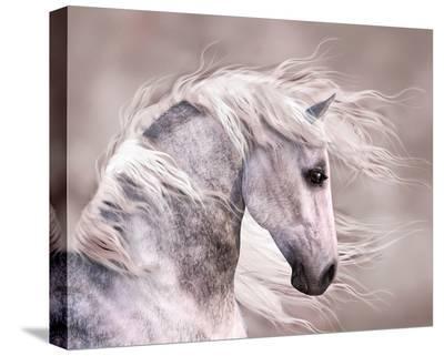 Pegasus--Stretched Canvas Print
