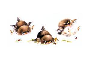 Bird and Ladybug by Peggy Harris