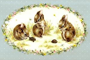 Bunny Tales by Peggy Harris