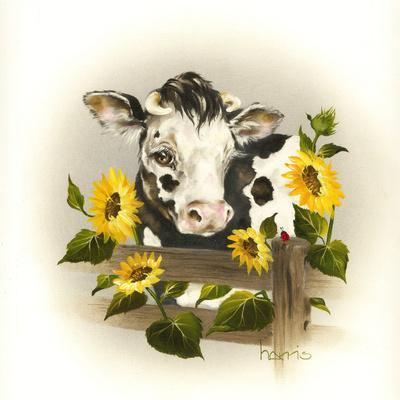 Cow and Sunflowers