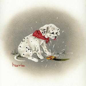 Dalmation 3- Sprinkles by Peggy Harris