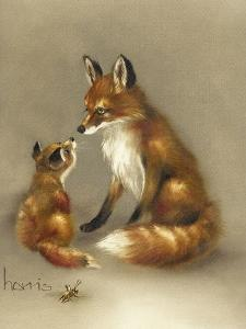 Little Fox Lost by Peggy Harris