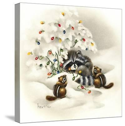 Raccoon, Chipmunks and Christmas Lights
