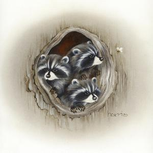 Raccoons in Hole by Peggy Harris