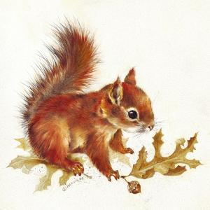 Red Squirrel by Peggy Harris
