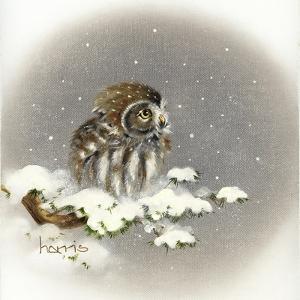 Snow Daze by Peggy Harris