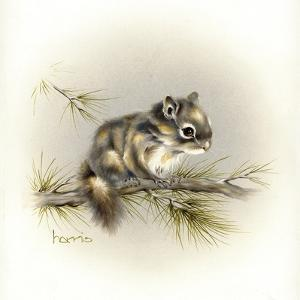 Tattle-Tail Baby by Peggy Harris