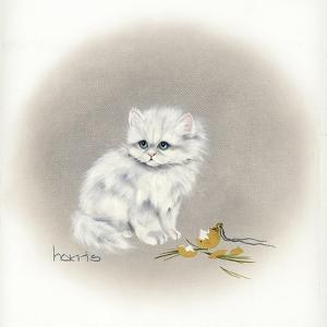 White Kitty (Ornament) by Peggy Harris
