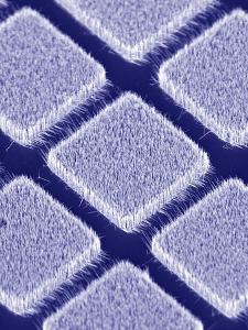 Gallium Nitride Nanowires, SEM by Peidong Yang