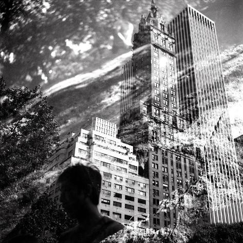 Central Park Double Reproduction d'art