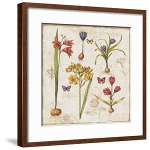 Histoire Naturelle VI by Pela Design