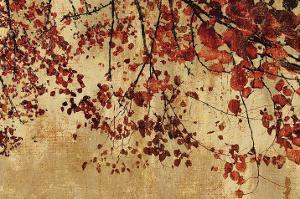 Colorful Season I by Pela & Silverman