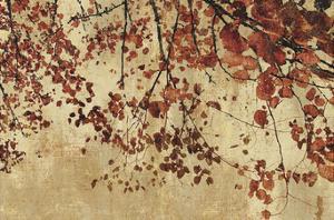 Colorful Season by Pela & Silverman