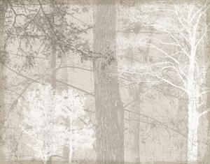 Luminous I by Pela & Silverman