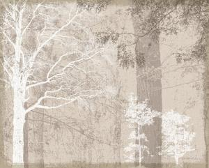 Luminous II by Pela & Silverman