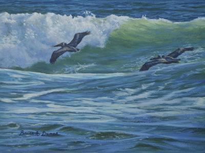 Pelican Skimmers-Bruce Dumas-Giclee Print
