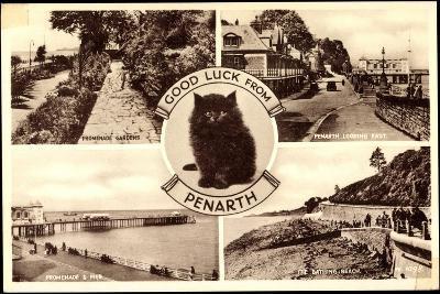 Penarth Wales, Promenade Gardens, the Bathing, Beach, Cat--Giclee Print
