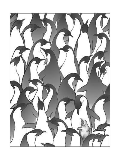 Penguin Family I-Charles Swinford-Art Print