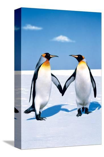Penguin Love--Stretched Canvas Print