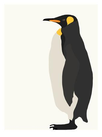 https://imgc.artprintimages.com/img/print/penguin_u-l-f8kuct0.jpg?p=0
