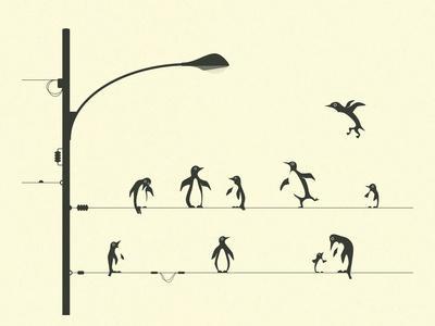 https://imgc.artprintimages.com/img/print/penguins-on-awire_u-l-q13280b0.jpg?p=0