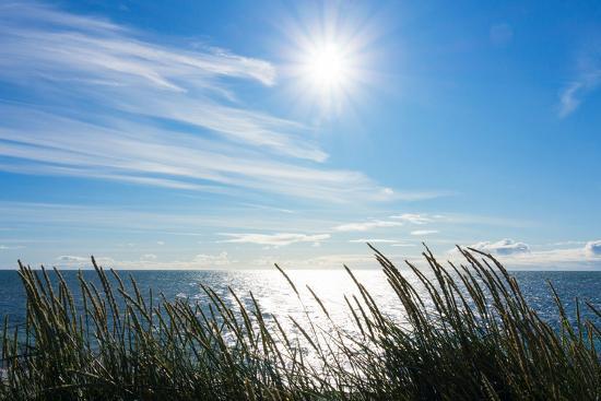 Peninsula Reykjanes, Iceland, Gardskagi, Sea Grass and Sun-Catharina Lux-Photographic Print