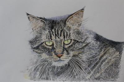 Pennsylvania Cat, 2009-Anthony Butera-Giclee Print