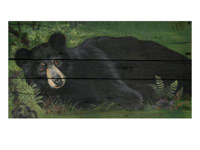 Lazy Bear Ranch