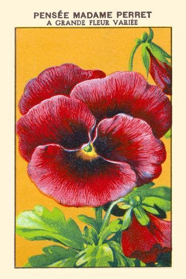 Pensee Madame Perret A Grande Fleur Variee--Art Print