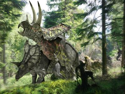 Pentaceratops Dinosaurs Mating-Jose Antonio-Photographic Print
