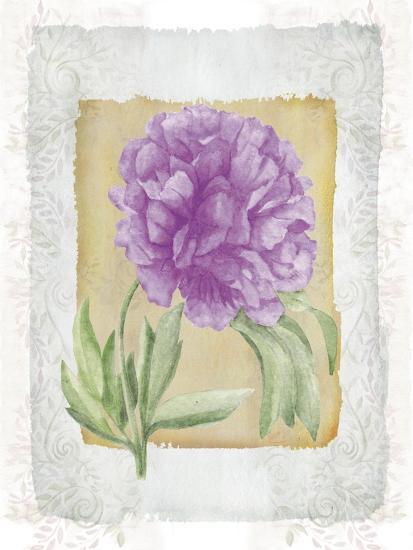Peonies 3-Maria Trad-Giclee Print