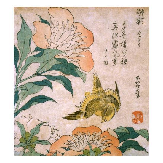 Peony and Canary-Katsushika Hokusai-Giclee Print