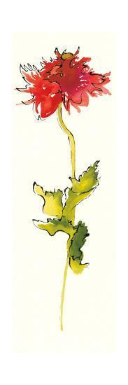 Peony Form Poppies III-Shirley Novak-Art Print