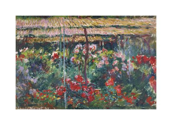 Peony Garden, 1887-Claude Monet-Premium Giclee Print