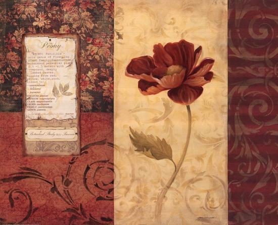 Peony Montage-Carol Robinson-Art Print