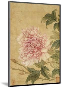 Peony-Yun Shouping-Mounted Premium Giclee Print