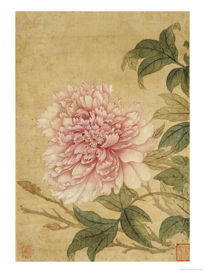 Peony-Yun Shouping-Giclee Print