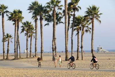 Image result for santa monica bicycle beach sunset 300 x 200
