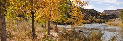People Fishing in the Rio Grande River, Orilla Verde Recreation Area, Pilar, Taos--Photographic Print