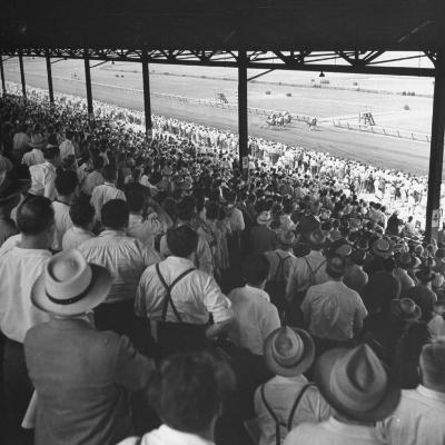 People Watching Horse Racing--Photographic Print