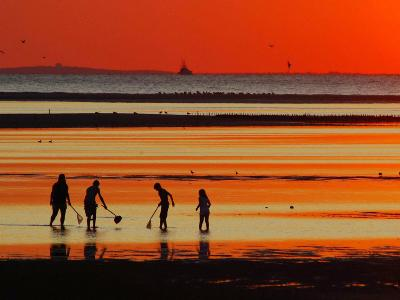 People with Nets at Low Tide in the Brewster Tidal Flats at Sunset-Darlyne A^ Murawski-Photographic Print