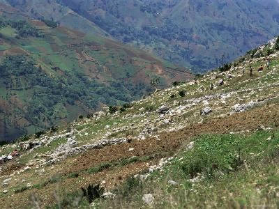 People Working in Steep Mountain Fields, at 2000M, Haiti, West Indies, Central America-Lousie Murray-Photographic Print