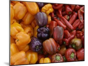 Peppers for Sale at Farmer's Market, Marin, California