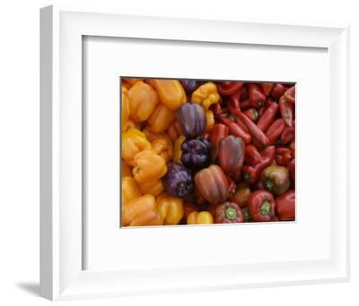 Peppers for Sale at Farmer's Market, Marin, California--Framed Photographic Print