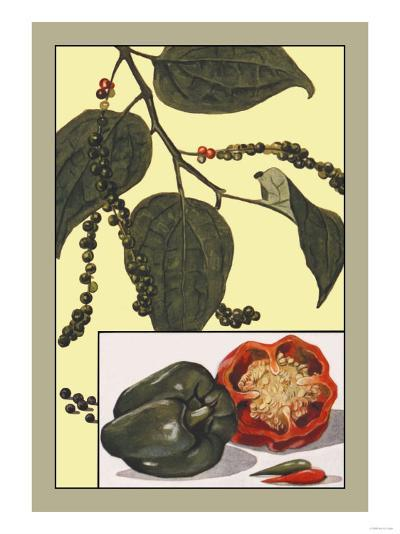 Peppers--Art Print