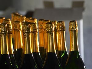 Bottles of Sparkling Wine, Bodega Carlos Pizzorno Winery, Canelon Chico, Canelones, Uruguay by Per Karlsson