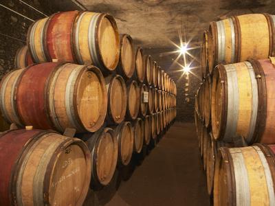 Chapoutier Winery's Barrel Aging Cellar with Oak Casks, Domaine M Chapoutier, Tain L'Hermitage